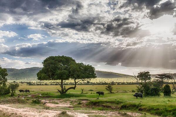 Kenya Weather Climate