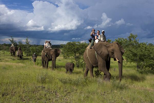 rwanda Safari Faqs