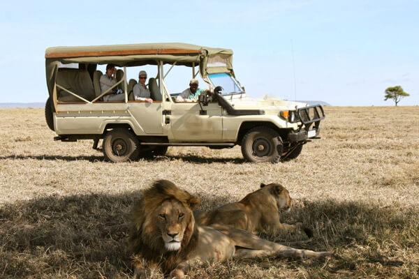 Tanzania Safari Tipping