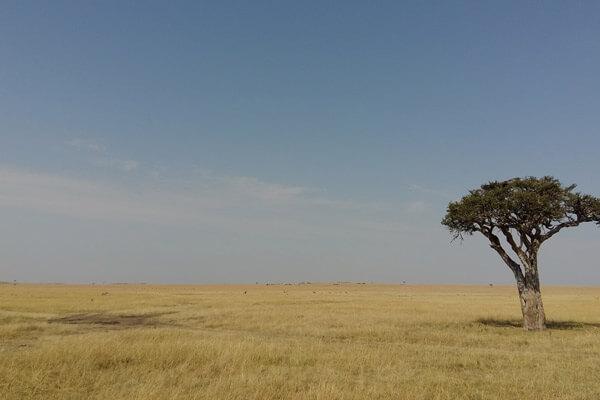 Tanzania Weather & Climate