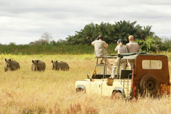 Uganda Safari Cost