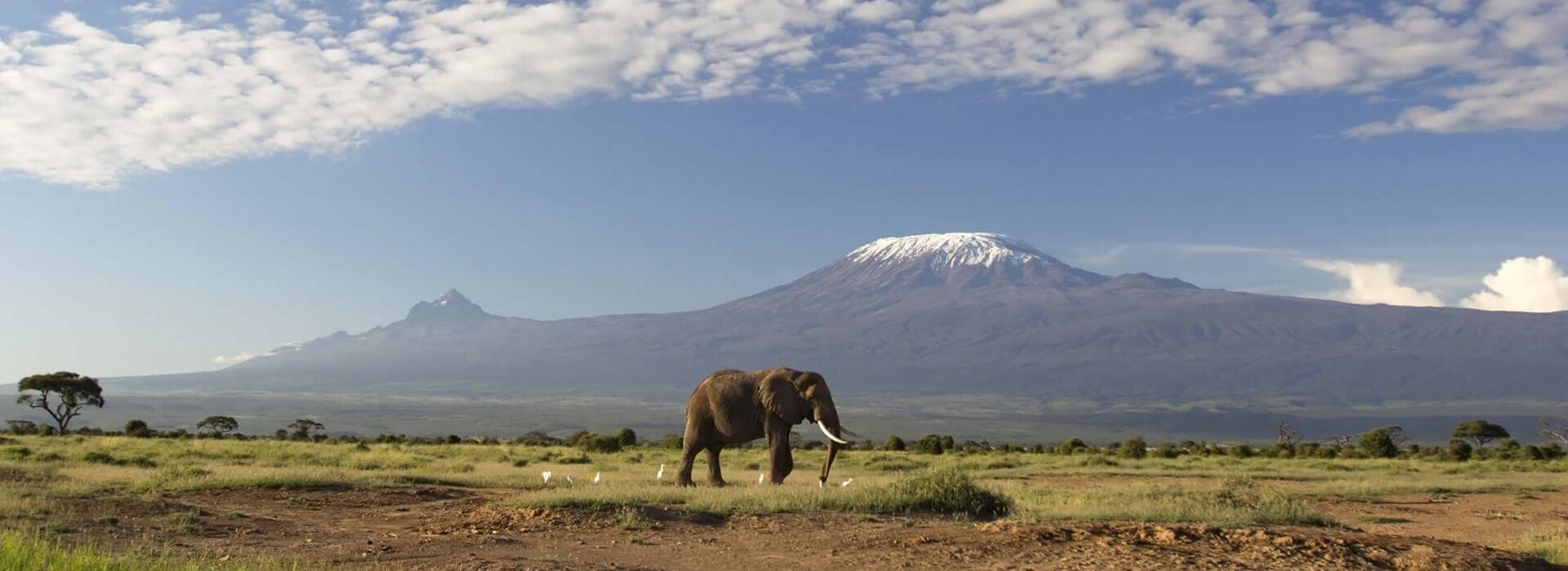 Best Time to Visit Kilimanjaro