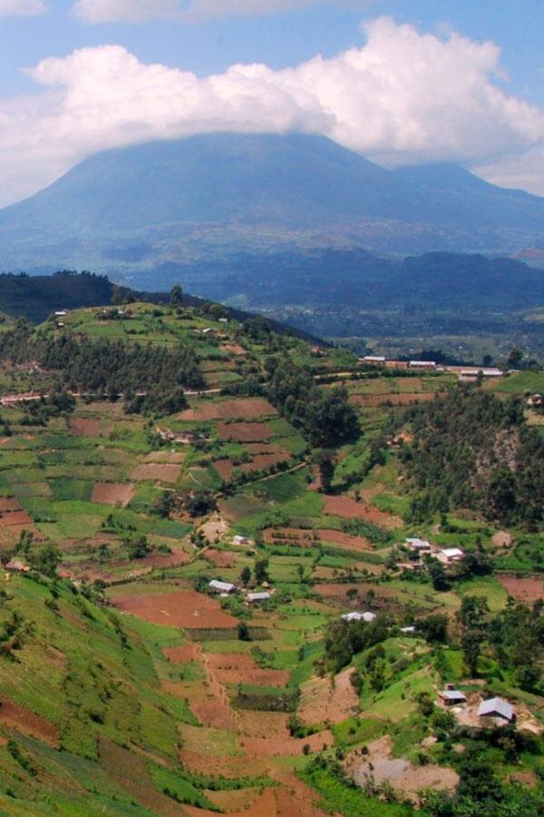 small farms in rwanda