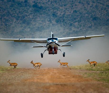 Kenya Fly in Safari