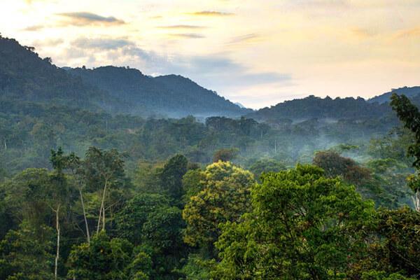 rwanda Weather & Climate