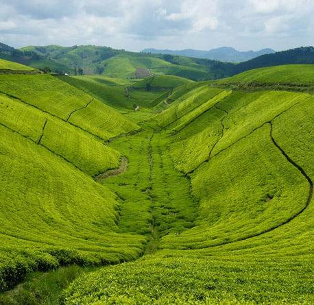rwanda land of a thousand hills