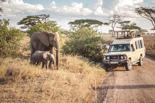 How To Go Tanzania