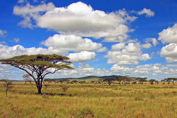 Tanzania Geography